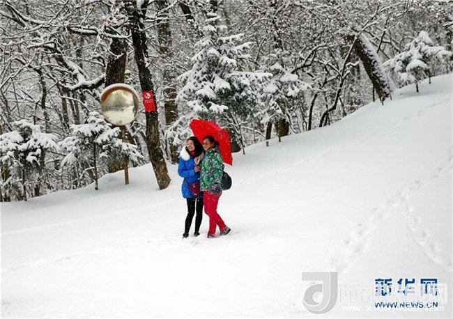 <b>多地迎来降雪</b>