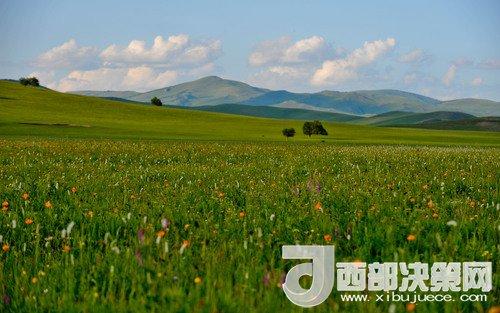 锡林郭勒草原。吴勇摄