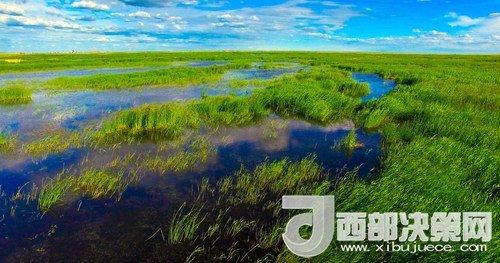 呼伦湖湿地。吴勇摄