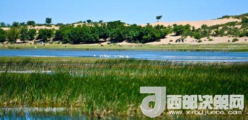 阿鲁科尔沁保护区湿地沙丘。吴勇摄
