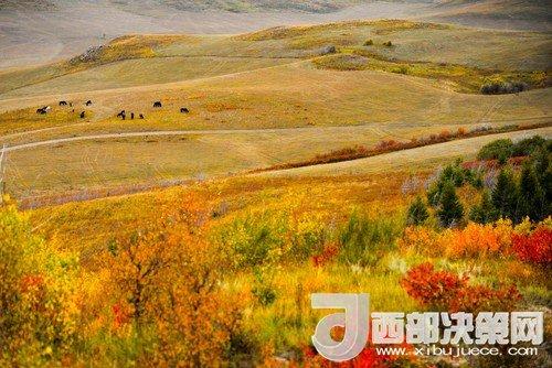 锡林郭勒草原国家级自然保护区。吴勇摄