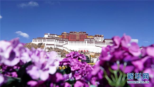"""西藏实行特殊优惠力推""""冬游西藏"""" 布达拉宫等景区免"""