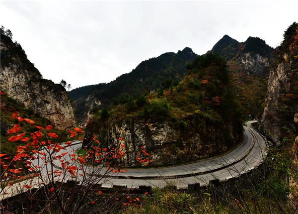 <b>秦岭古道</b>