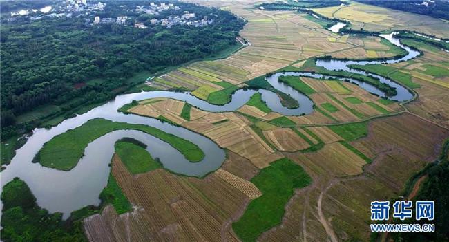 海口:湿地入城美如画