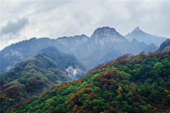 秦岭深处一座国家级植物园的绿色梦想