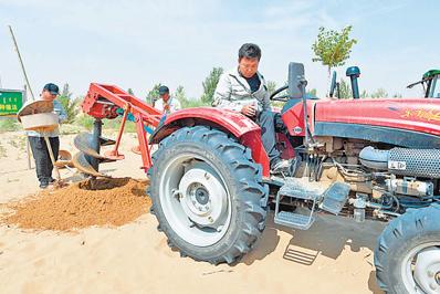 内蒙古库布其沙漠治理:科学治沙 支撑绿色成长