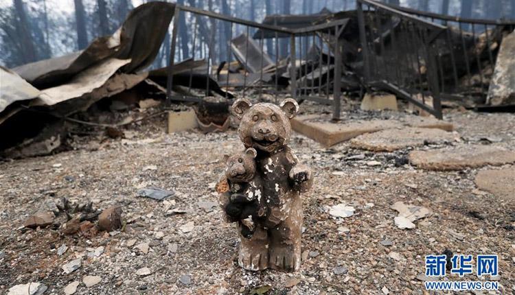 美国加州北部山火遇难人数升至48人