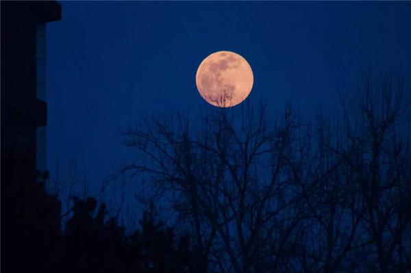 """""""超级元宵月""""亮相天宇 你拍到了吗?"""