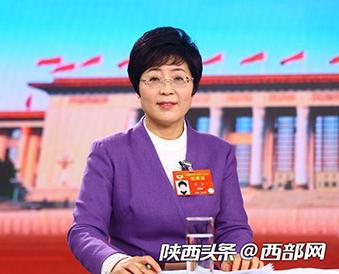"""全国政协委员高洁:""""西融、东联、内优""""强化渭南次核心城市作用"""