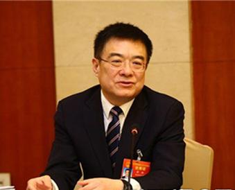 陕西代表团分组审议政府工作报告