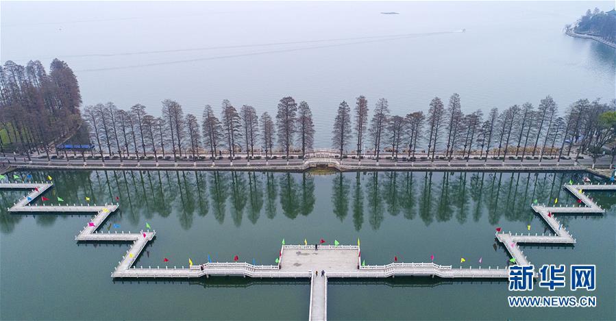 """(两会・图文互动)(7)""""这样的绿道太赞了!""""――代表委员热议东湖绿道建设"""