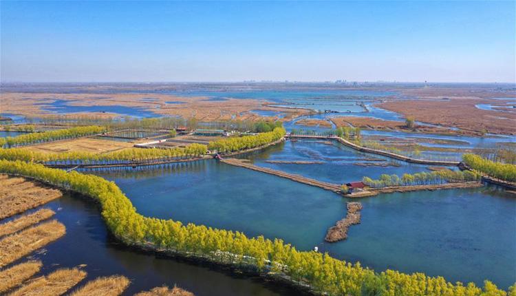 河北雄安新区建设发展两周年纪实:奋进,向着未来之城