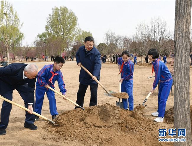 习近平:推动国土绿化不断取得实实在