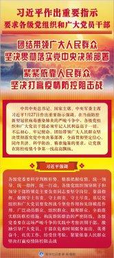 习近平:紧紧依靠人民群众坚决打赢疫