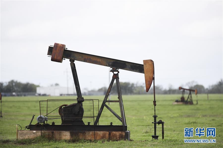 (国际)(6)纽约油价20日罕见跌入负值