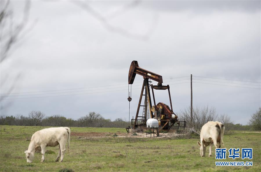 (国际)(3)纽约油价20日罕见跌入负值