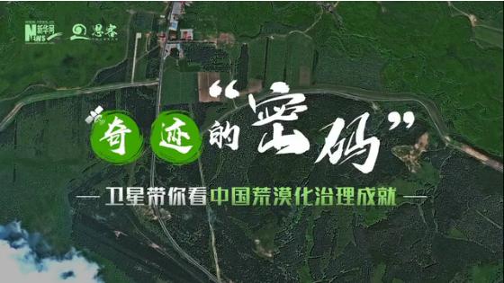 卫星告诉你,中国人种树有多牛