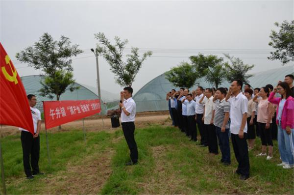 """扶风县午井镇推进""""136模式""""发展产业强镇富民"""