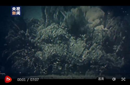 """时政微视频丨续写""""春天的故事"""""""