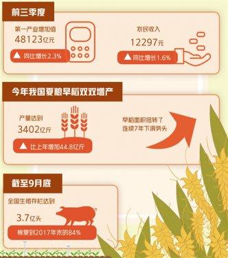 秋粮收获已近8成 预计全年粮食产量将达历史最高