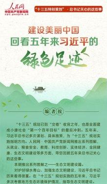 建设美丽中国,回看五年来习近平的绿