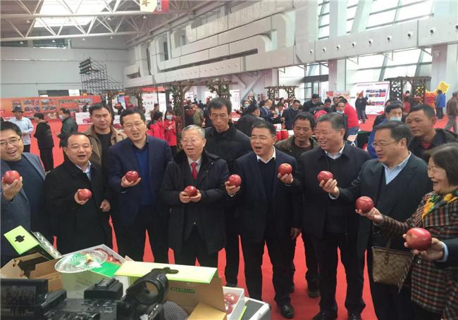 中国好苹果大赛2020总决赛凤翔苹果专场推介会在杨凌召