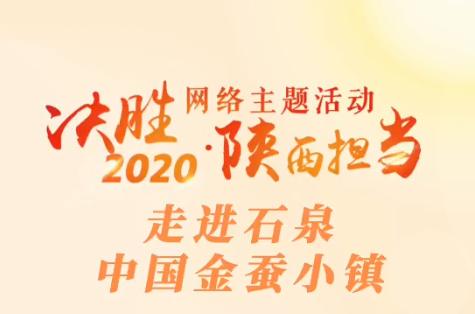 """""""决胜2020・陕西担当""""网络主题活动走进石泉中国金蚕小镇"""