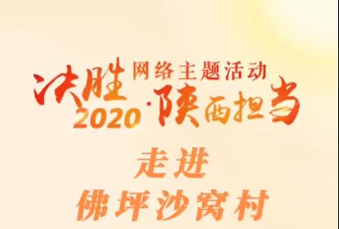 """""""决胜2020・陕西担当""""网络主题活动――走进佛坪沙窝村"""