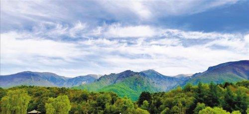 陕西这样开展义务植树40年 4亿人次 年均6000万株