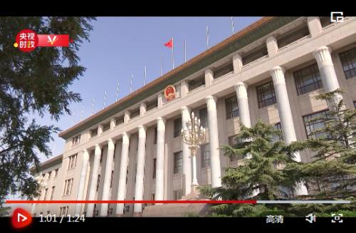 独家视频丨新修订的香港基本法附件一、附件二获得全票