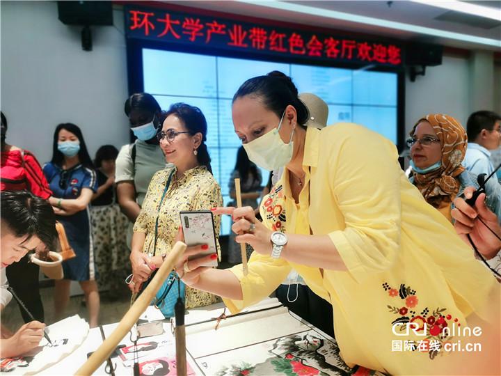 【Hi 西安】在碑林看未来 驻华大使夫人希冀中埃两国可以有更多科技合作_fororder_图片53