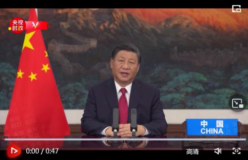 独家视频丨习近平:民主不是哪个国家