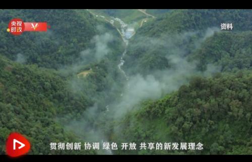 独家视频丨习近平提及云南大象北上之
