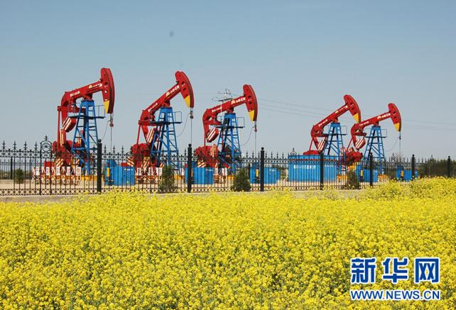 """打造有中国特色的现代""""油公司""""模式"""
